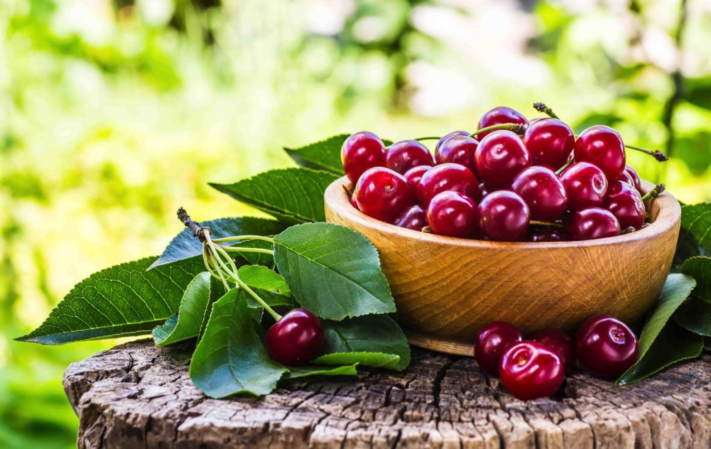 Bowl of Cherries on Stump